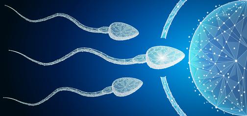 不妊治療の病院を変更後、最後の人工授精も陰性